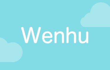 Logo for WenHu - Learn Mandarin Chinese Characters