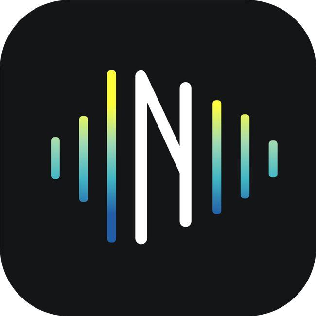 Logo for NoiseGate