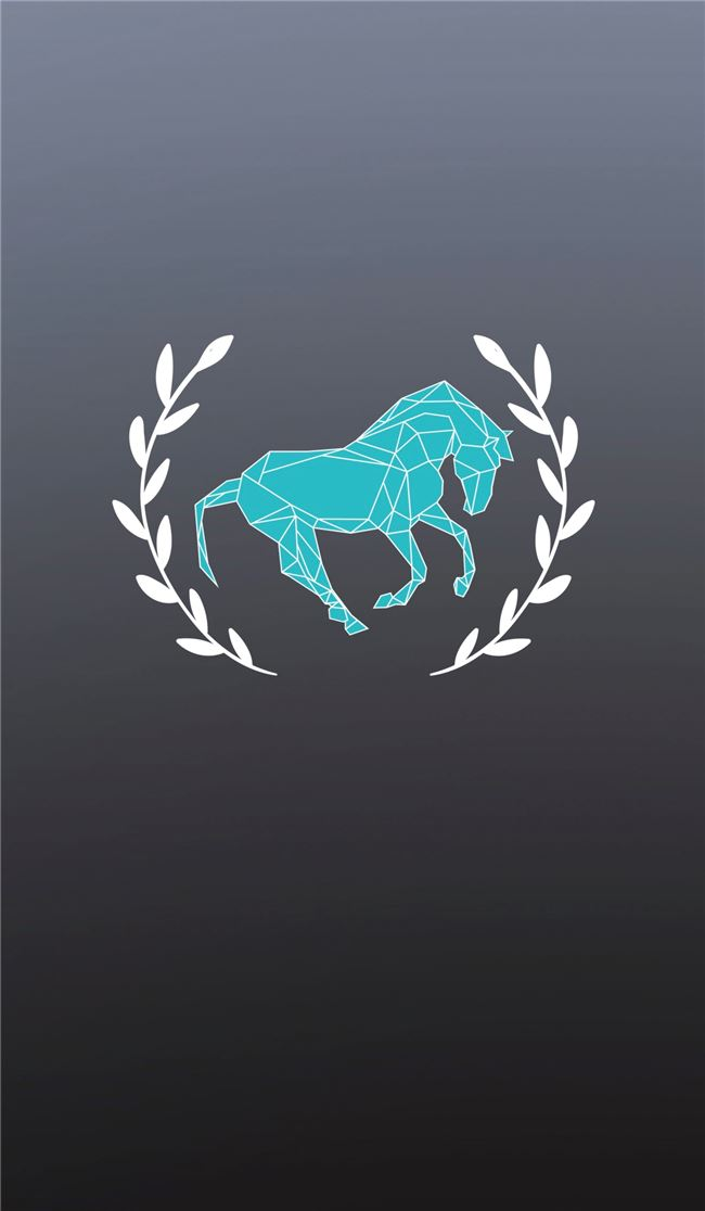 Logo for Australian Equestrian Comps