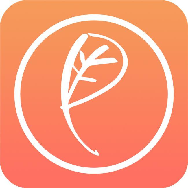 Logo for Respekt Beauty Meditation